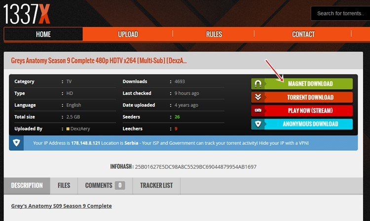 torrent server - 1337x