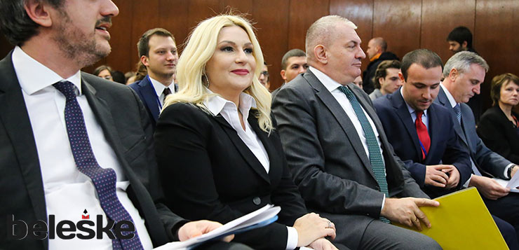 Zorana Mihajlovic