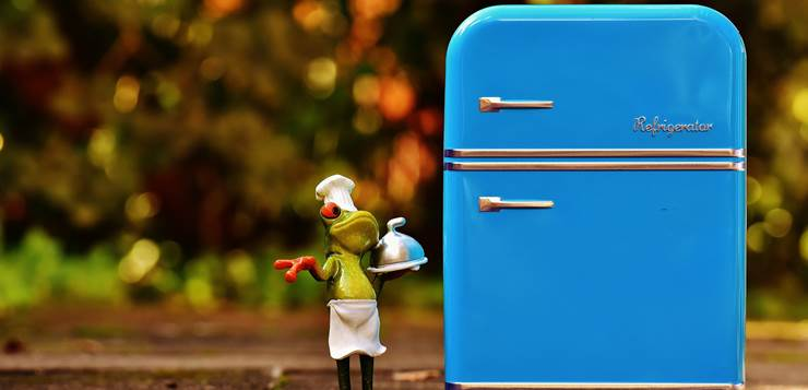 žaba pored frižidera