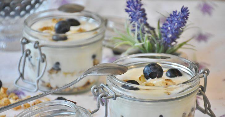 jogurt u casi sa borovnicama