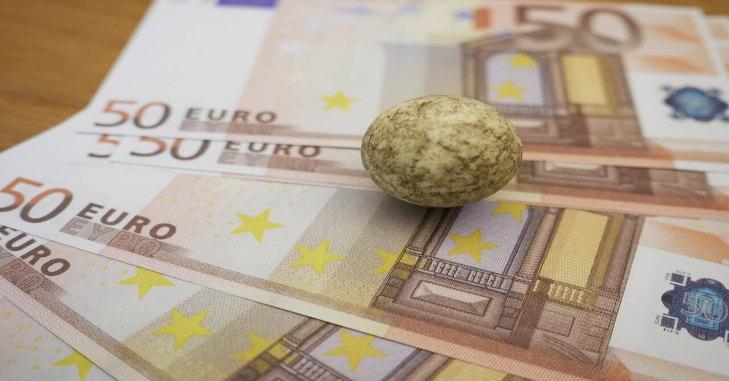 Novčanice od 50 evra na stolu