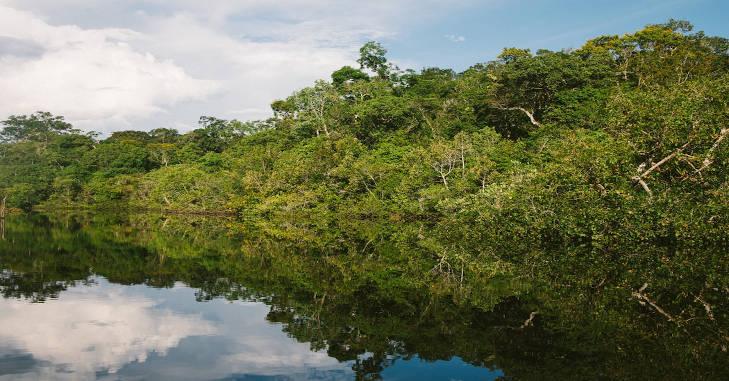 Reka amazon u Južnoj Americi