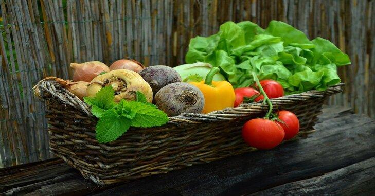 pletena korpa sa raznim voćem i povrćem organske proizvodnje